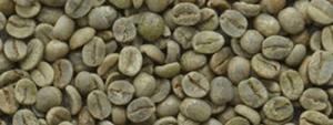 caffe3 1